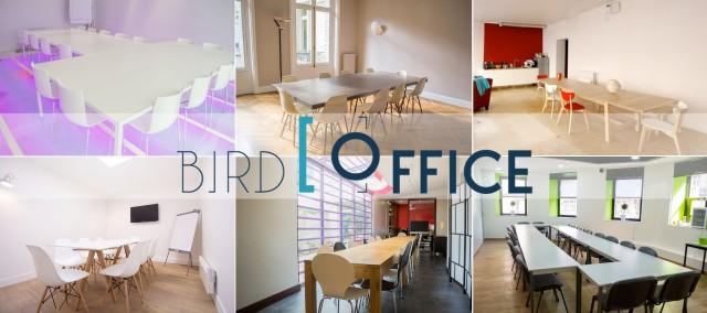 Bird Office